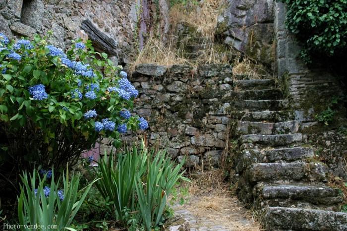 Escalier maison saint laurent sur sèvre