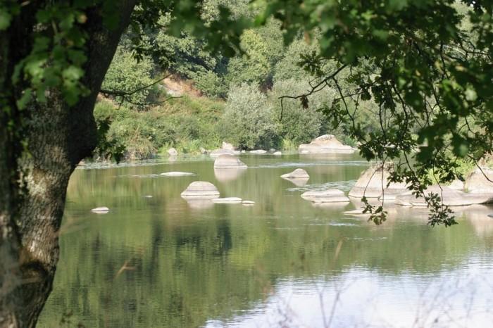 Cours d'eau la rivière la Sèvre Nantaise